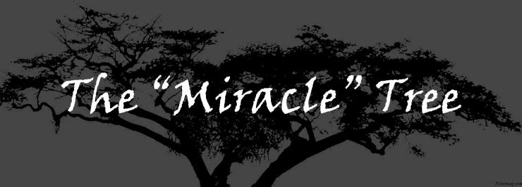 miracletree